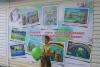 Юный участник городского конкурса художественного творчества  «Мой Волгодонск – самый яркий и красочный город!»  (остановочный павильон на проспекте Строителей)